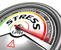 Parent Stress